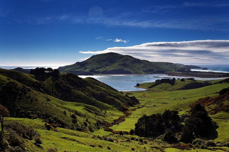 Otago Peninsula Trust News