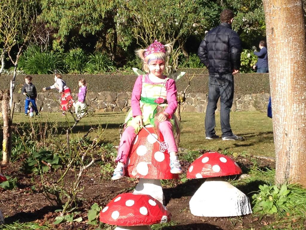 Cadbury Carnival Dunedin Glenfalloch Fairies Festival 2014