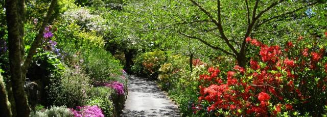 Glenfalloch Gardens Otago Peninsula Dunedin