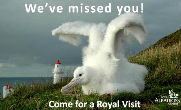 Otago Peninsula Trust attractions re-open